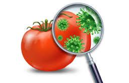 Définition de l'hygiène alimentaire